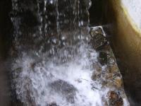 Wasser-Fall(e)?