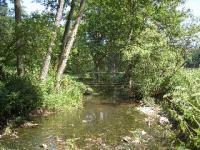 Wasser-Wege